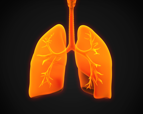 Insmed Presents Novel Inhalation Technologies for Lung Diseases, Infections at European Respiratory Society's International Congress 2014