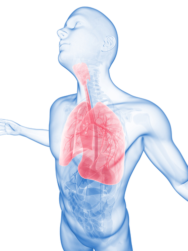 New Breathalyzer Can Detect Lung Cancer Through the Breath