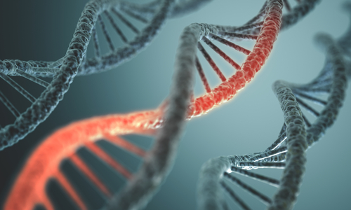 RNA Combination Therapy For Lung Cancer May Lead to Individualized Therapies