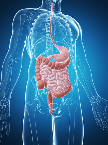 Lung Disease Patients Have Higher Incidence of Inflammatory Bowel Disease