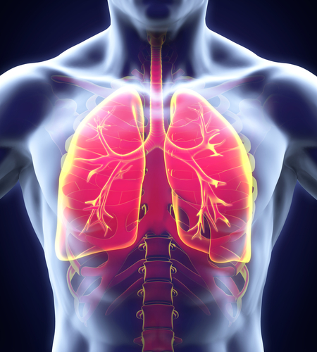 Imbio Receives FDA Approval To Lung Density Analysis Software For COPD