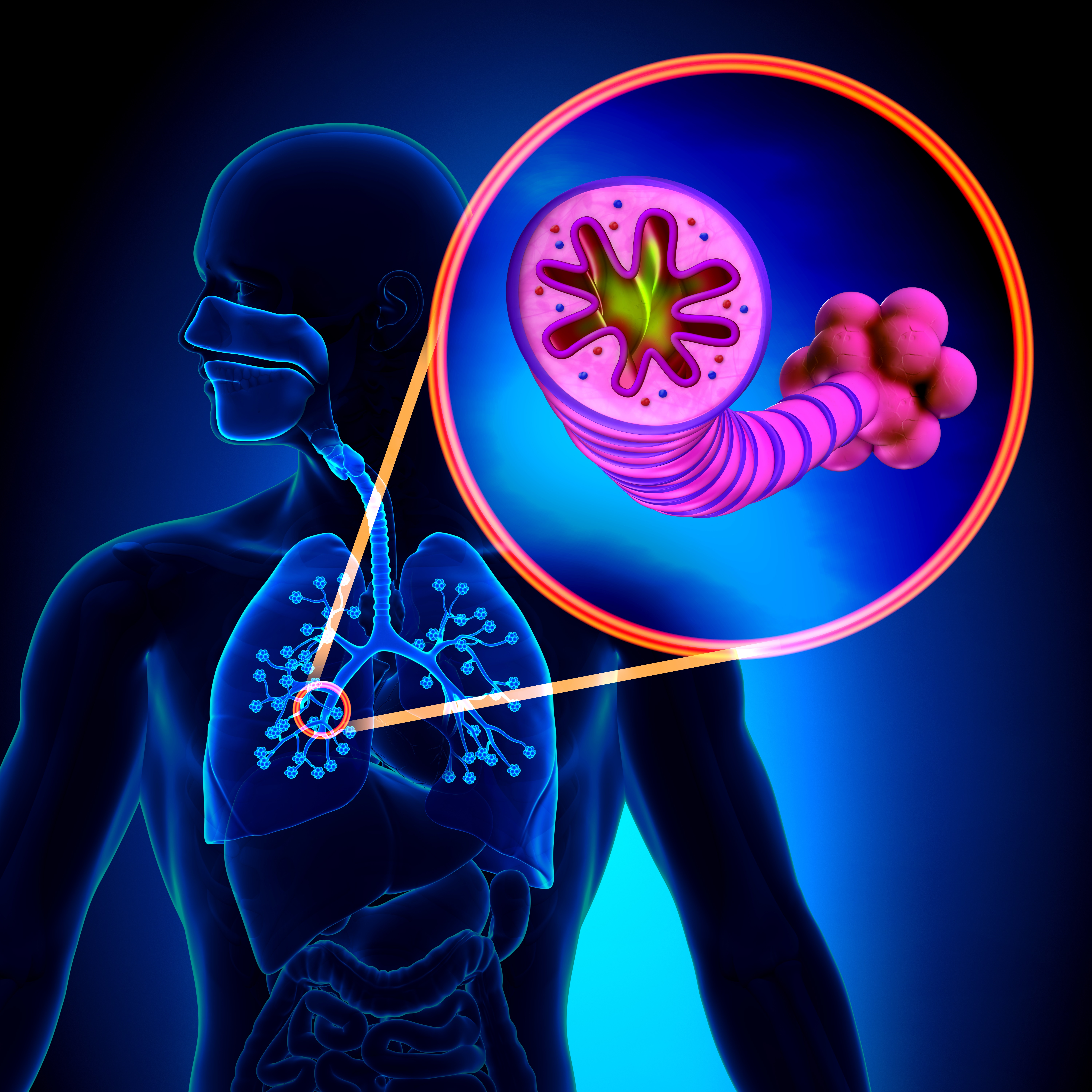 GSK and Theravance's SUMMIT COPD CV Survival Study Fails to Achieve Primary Endpoint