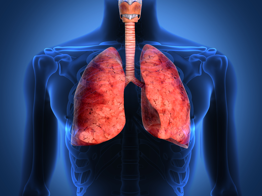 DiscoveryBioMed Discovers Novel Monotherapy for Lung Diseases Such as CF
