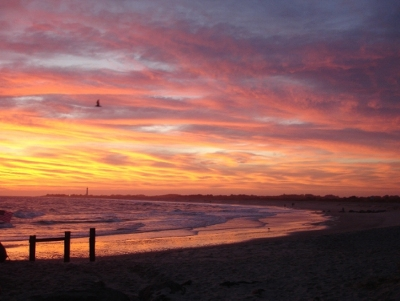Bayer's Breathless Moments Contest Winning Photo taken by Patricia Middings of Chester, N.J.
