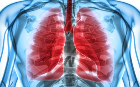 Boston and Toronto Researchers Discover Two Additional Molecules Involved in Lung Scarring